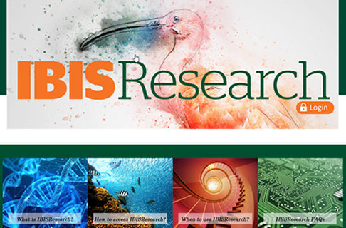 ibisresearch website